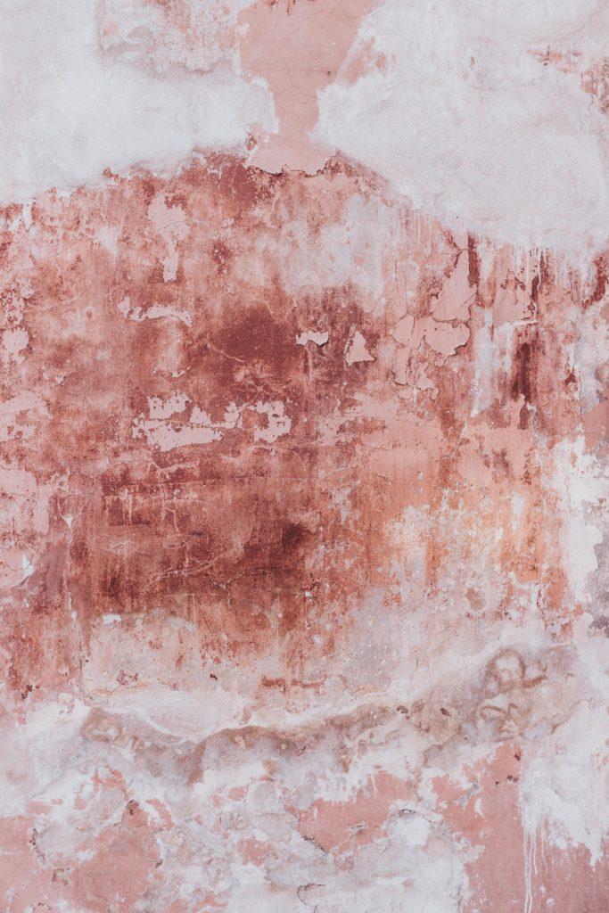 seinan-pesu
